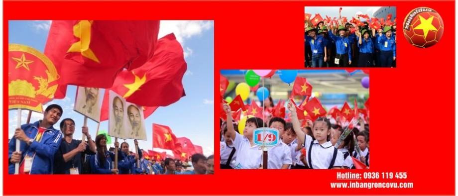 In cờ Việt Nam, Cờ Việt Nam